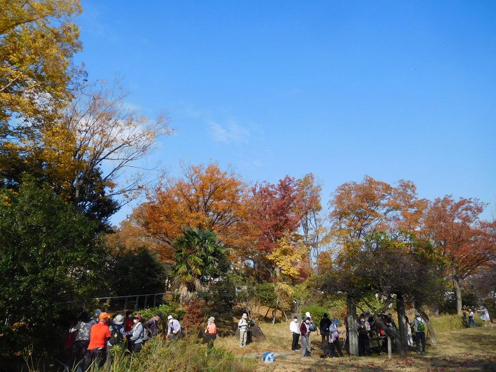 最初の休憩地 小黒公園の紅葉を楽しむ皆さん
