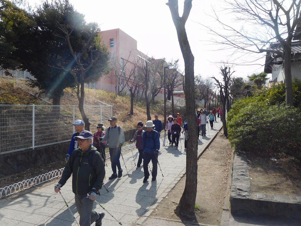 荏田南小学校横を歩くと・・・・