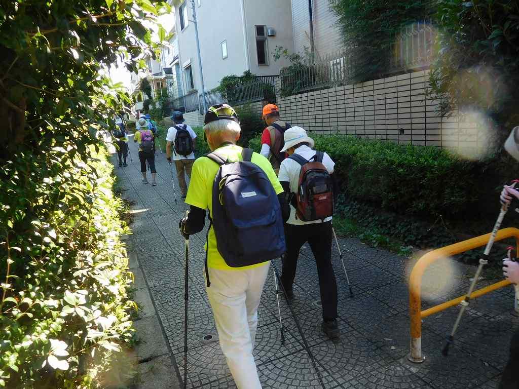 荏田高校を目指して遊歩道をウォーキング