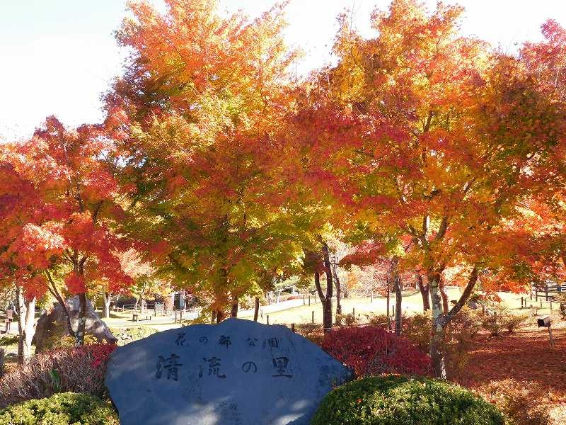 「清流の里」碑と見事な紅葉