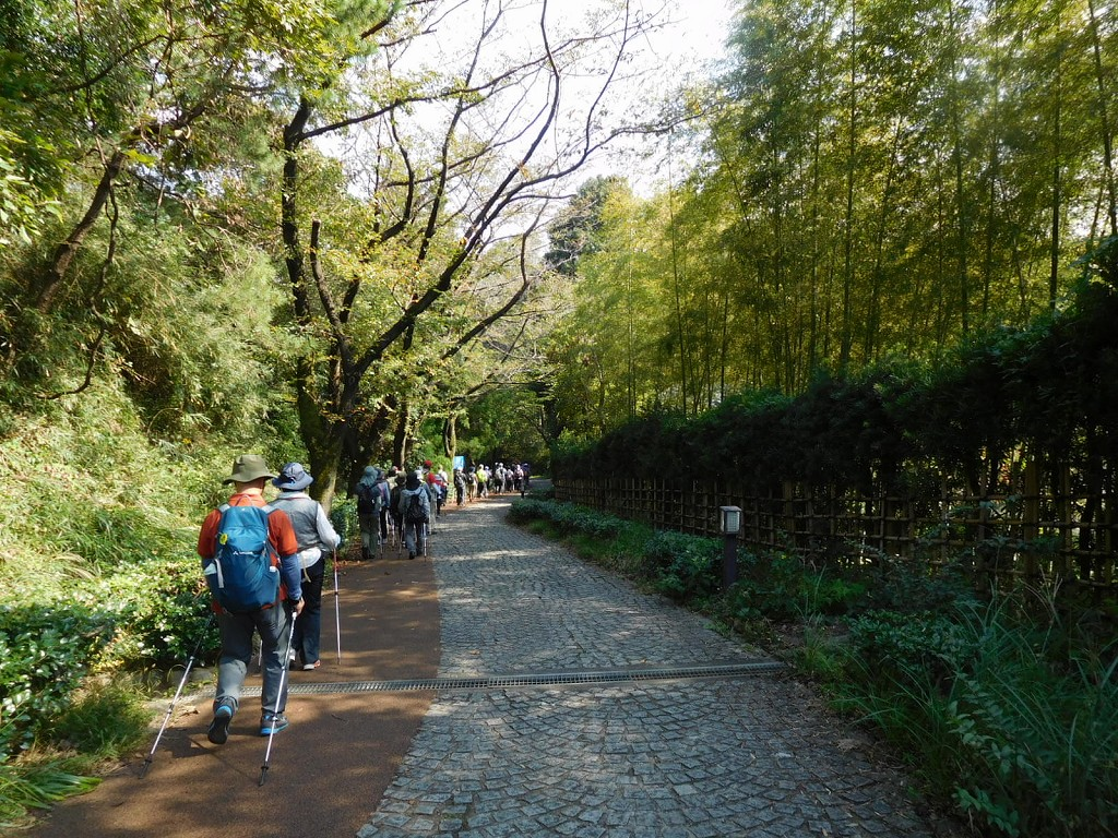 生田緑地公園内を歩く