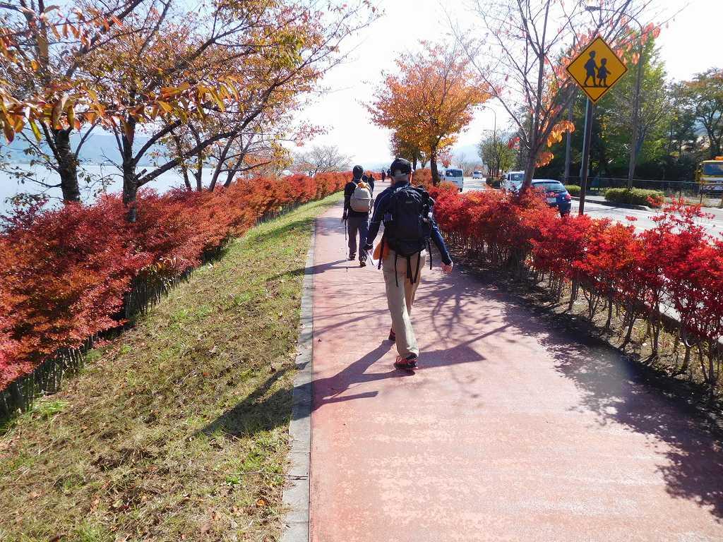 綺麗に紅葉している道を歩くAさん・Tさん
