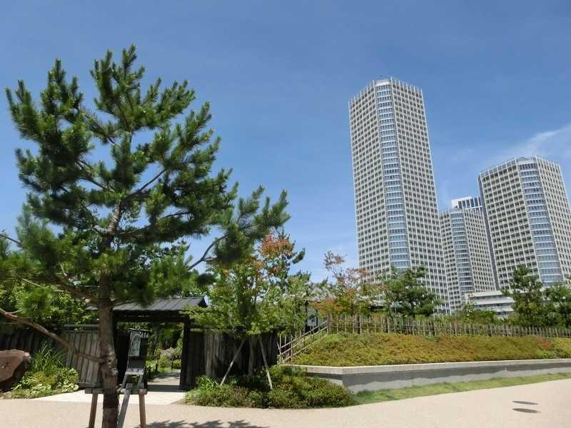 「帰真園」前から二子多摩川ビルをパチリ!!
