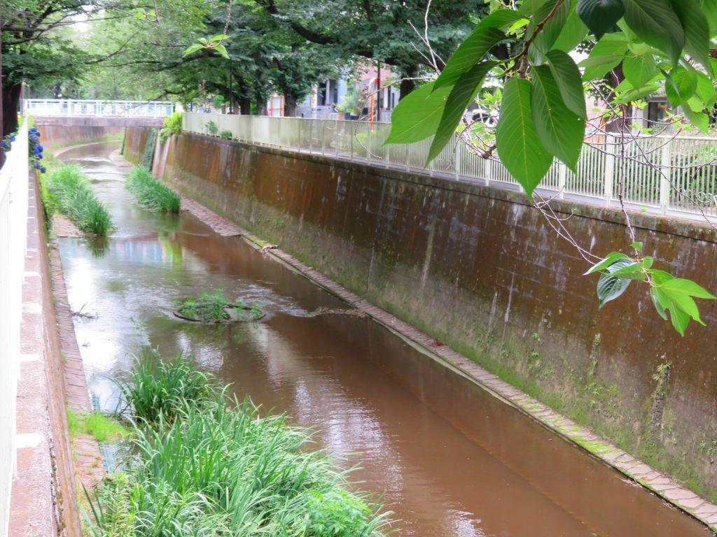 川幅は整備されている