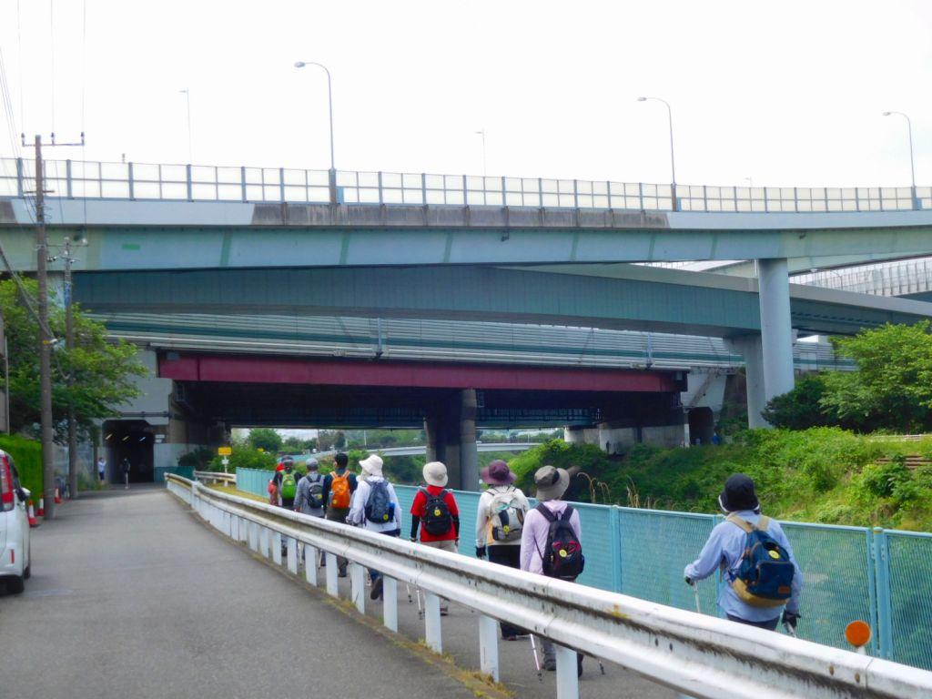 鶴見川沿いを歩く一班