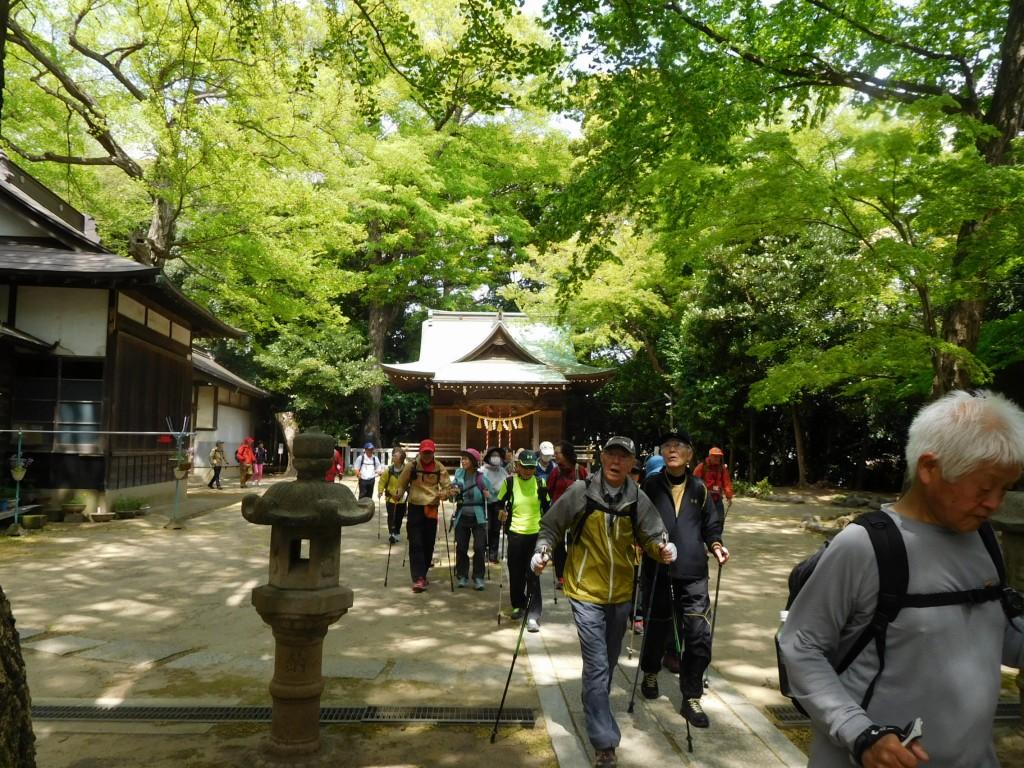 春日神社境内  参道が意外と長い神社です