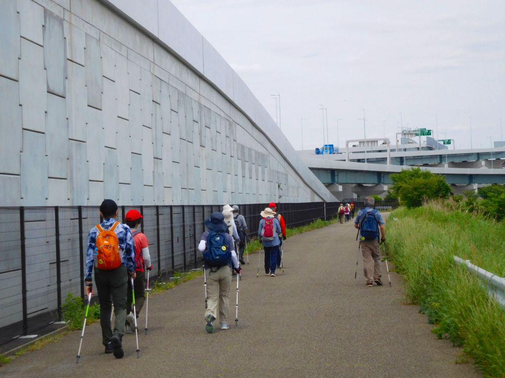 鶴見川に戻ってきました