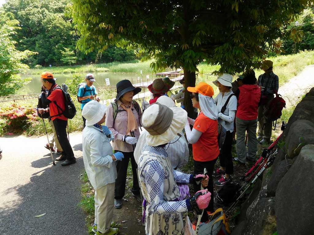 もえぎの公園で水分・糖分補給休憩・女性群は木陰で休憩