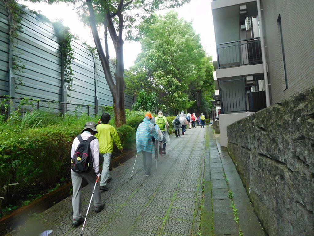 住宅前の緑道