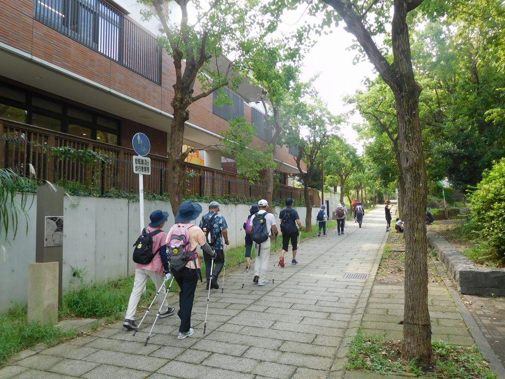 荏田南中学校手前の緑道を歩く