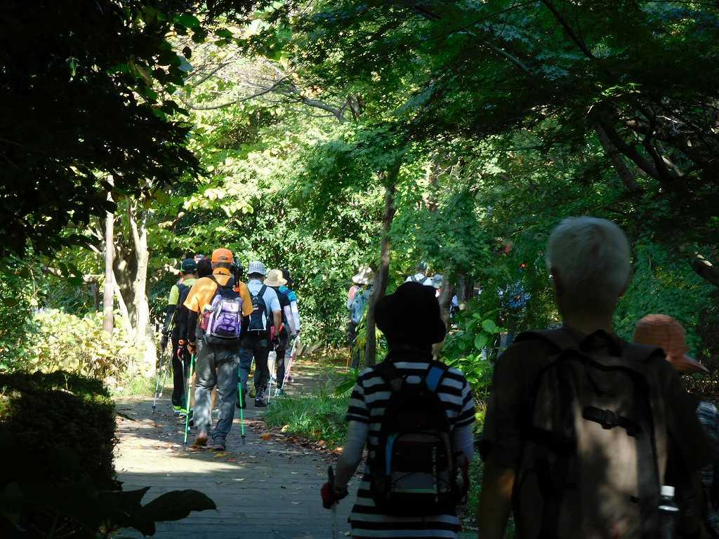 鴨池公園まで1班・2班一緒に歩き写真の地点から100メートルの所で分かれる