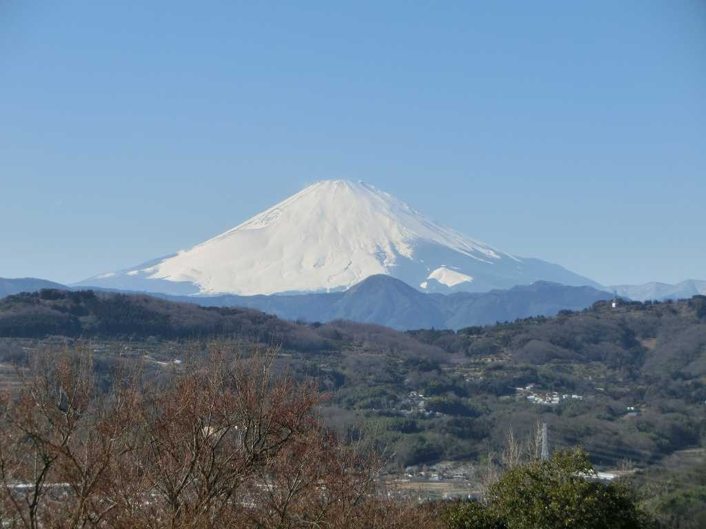 雄大な雪景色の富士山も雲一つ無く「凄い 綺麗 見事!!」