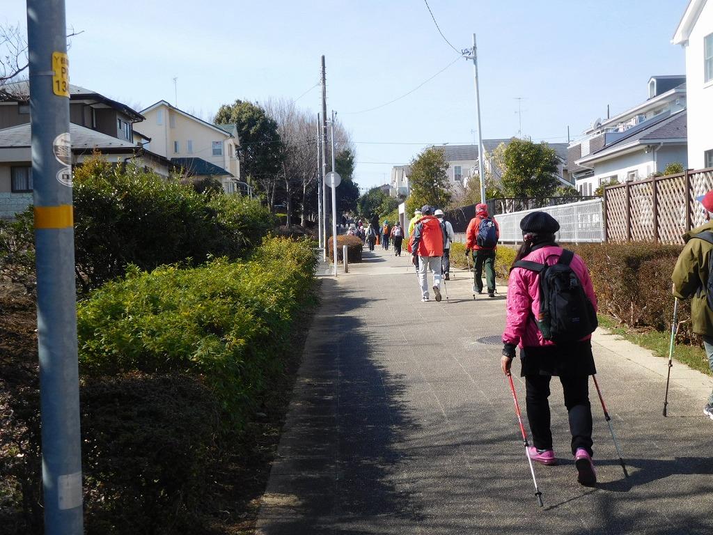 荏田南どんぐり公園手前の遊歩道を歩いてます