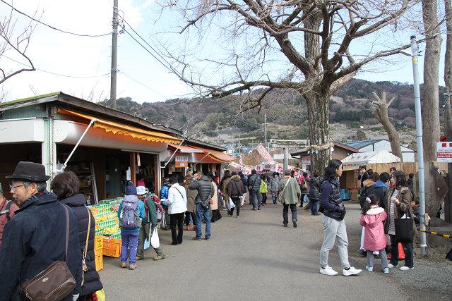 お祭り会場はお店も開き観光客も大勢です。