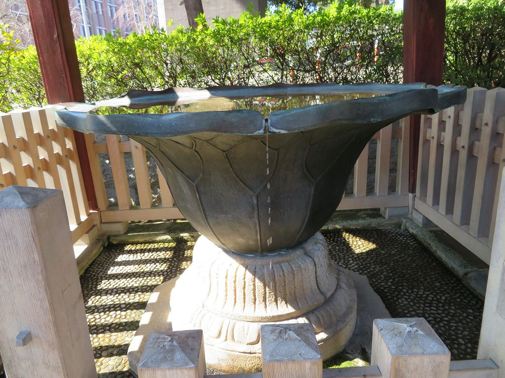 手水舎は桂昌院寄進の蓮葉形で常時水が流れている大変珍しいもの