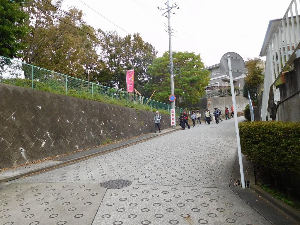 バラ苑を後にして岡本太郎美術館を目指す