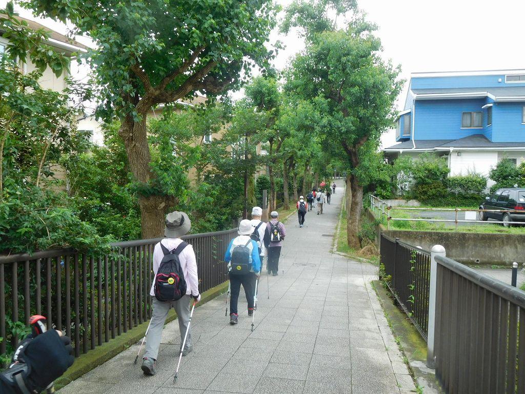 この通りは通学時間帯以外は歩きやすい箇所です