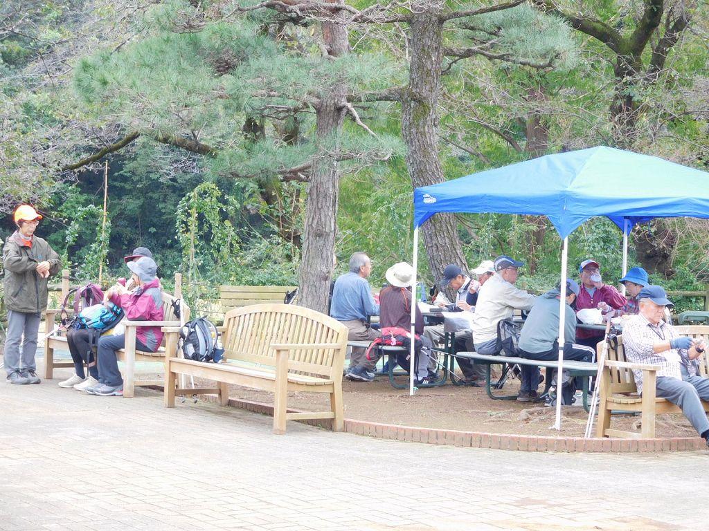 秋バラ約625種 約2,900株のバラ苑で昼食