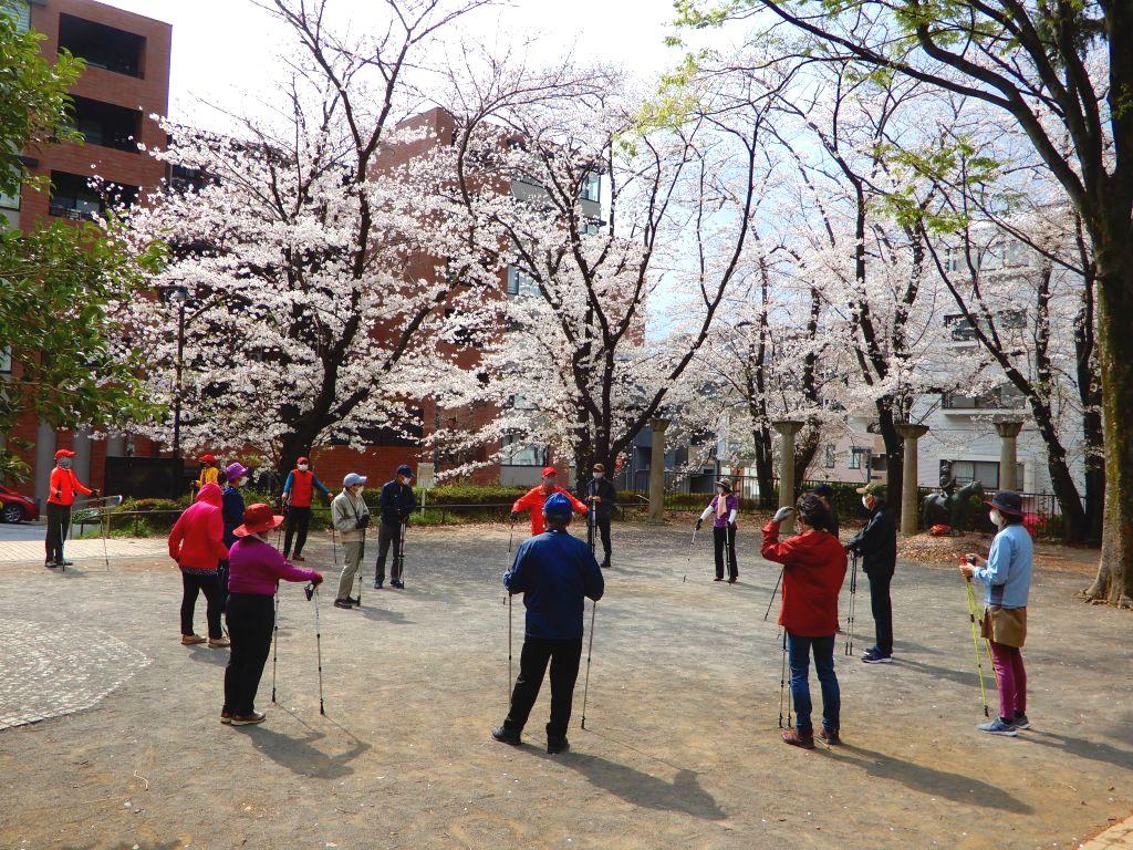 桜の中でオリエンテーション