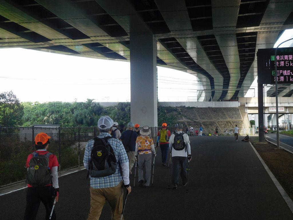 東名高速高架下 一班に続き2班が歩いて行きます