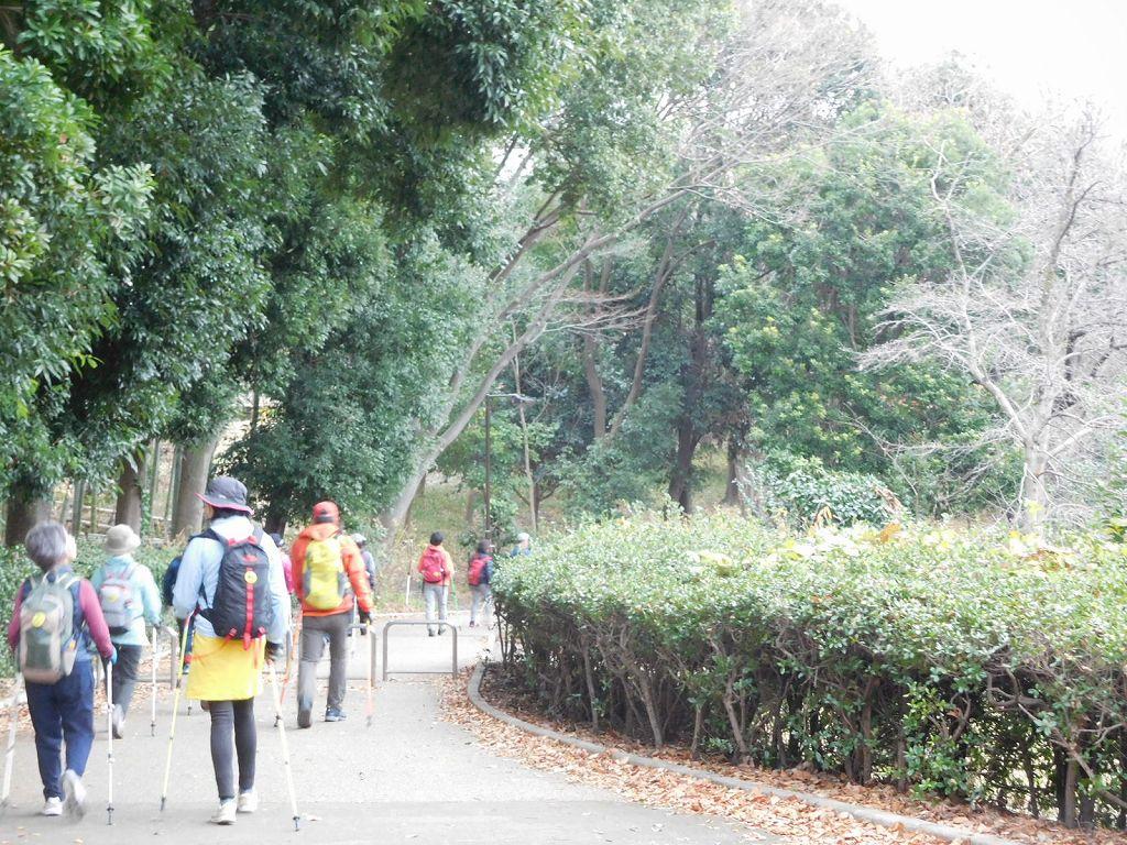 鴨池公園を歩く