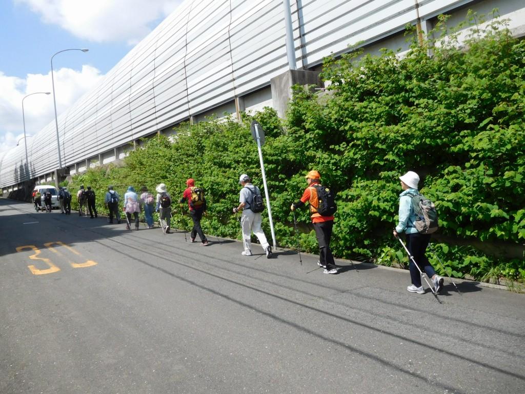 東名高速の側道をウォーキング 反対の側道が工事中の為意外と車が通る