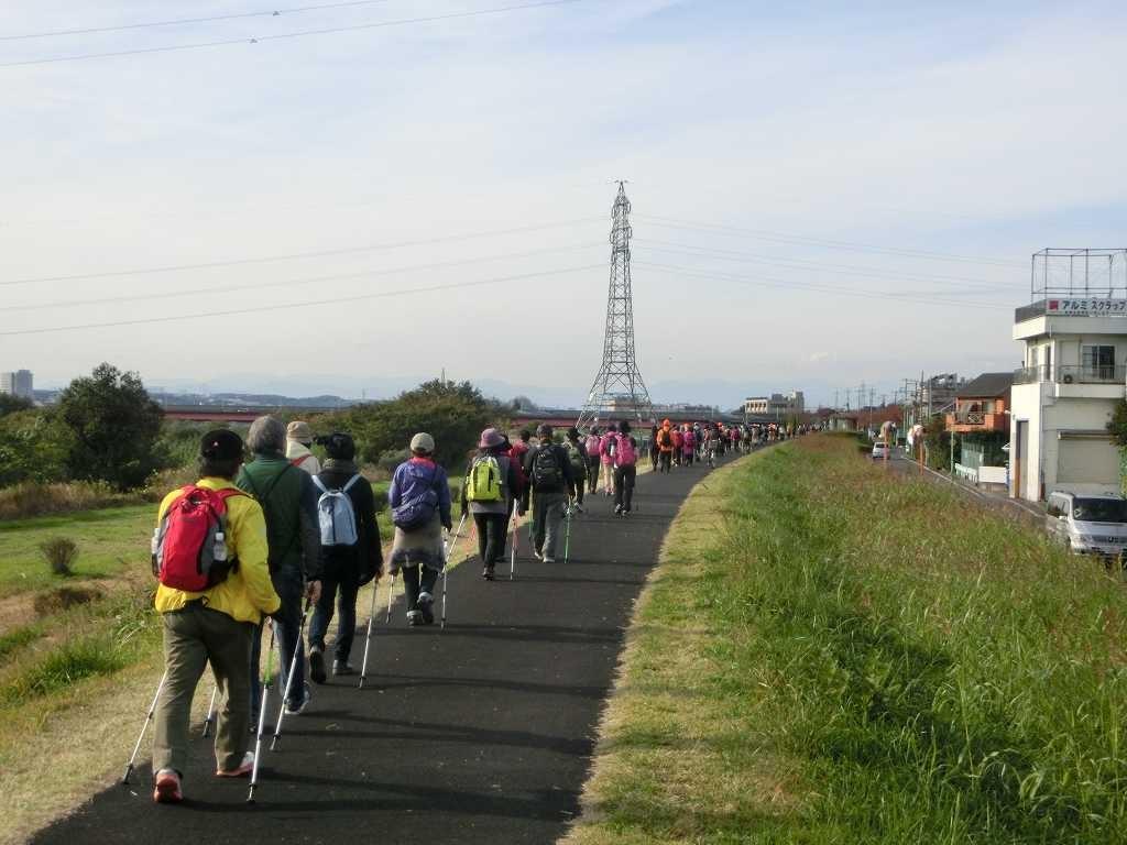 和泉多摩川を目指してB班最後尾が進んで行きました