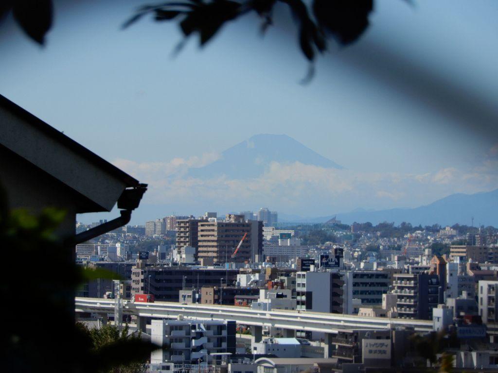 庭園からの眺望 富士山が見えます