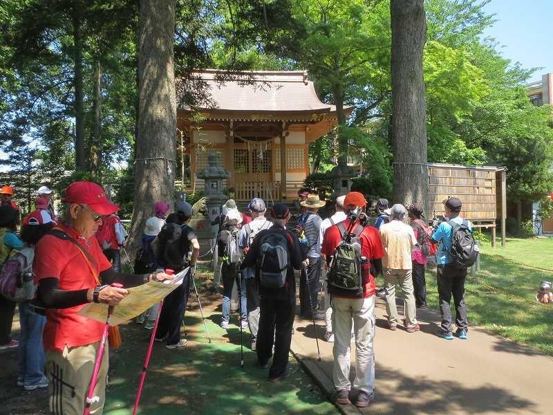 大石神社「大石観桜」王子神社とともに長津田の鎮守です。春は桜が綺麗