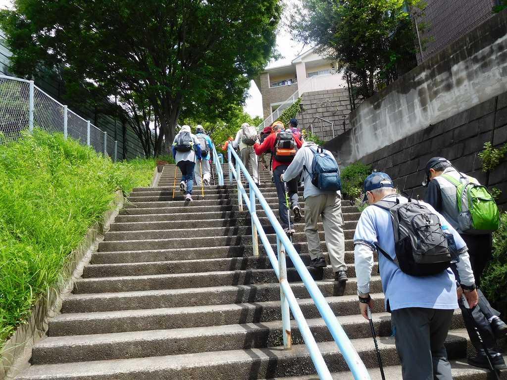 荏田猿田公園で休憩後 江田駅へ向けての階段