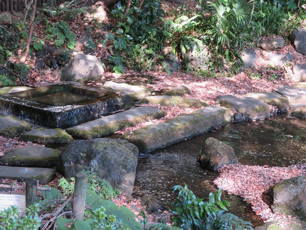湧水の源泉
