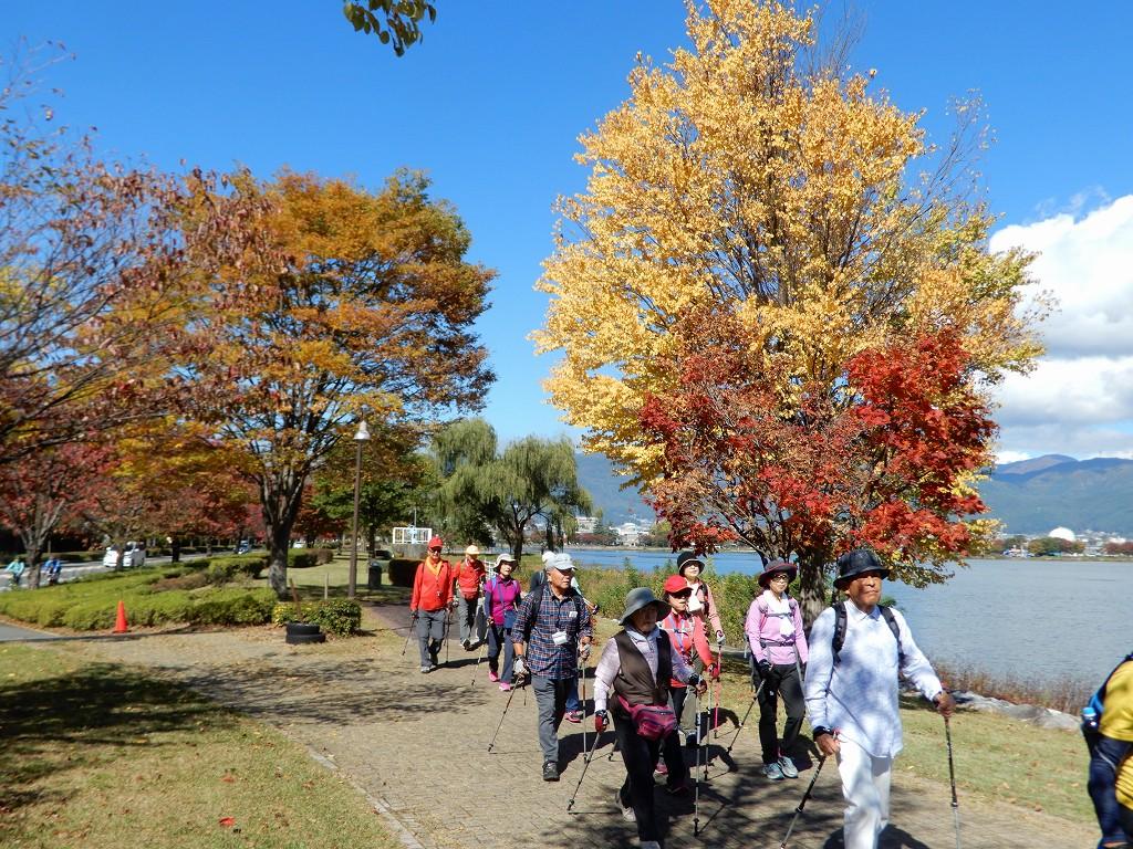 紅葉・黄葉と続き楽しく歩いてます