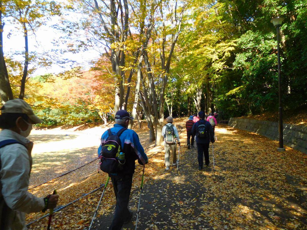 枯葉の絨毯を踏みしめ 鴨池公園竹林保存遊歩道に入ります