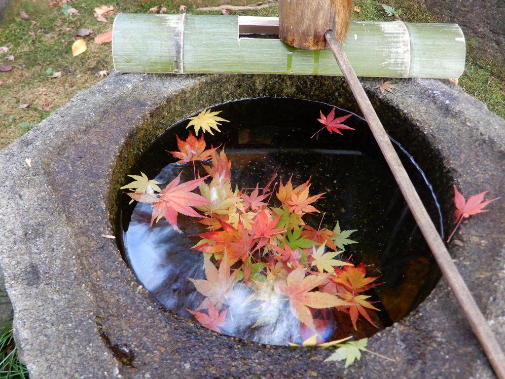 この水をすくって、落とすと清らかな音が聞こえてきます