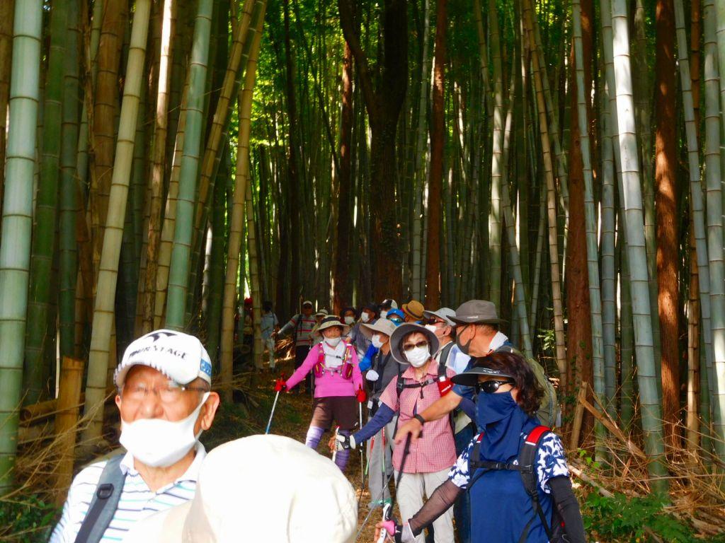竹林の中の一班