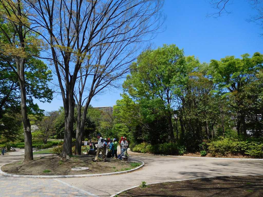 鴨池公園の木陰で水分・糖分補給