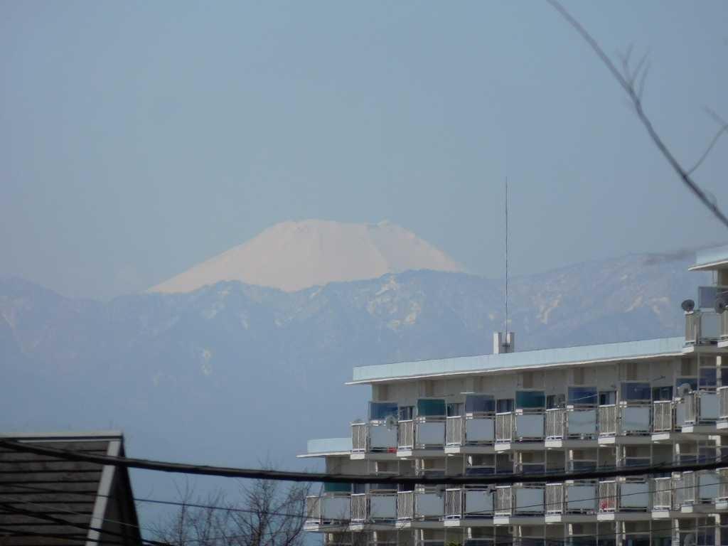 富士山も青空のもと綺麗に見えています