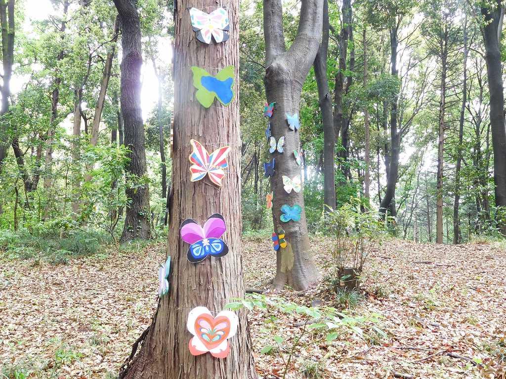 森の小径には沢山の蝶々が・・・・