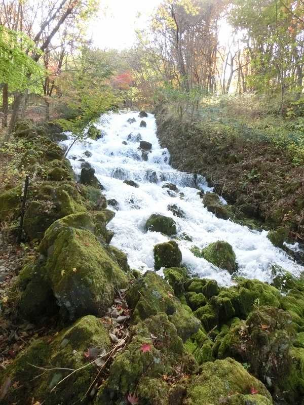 明神の滝の上部分 定期的に水量が増し滝の景観が良くなります