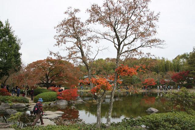 「日本庭園」内の景観 紅葉が綺麗ですね
