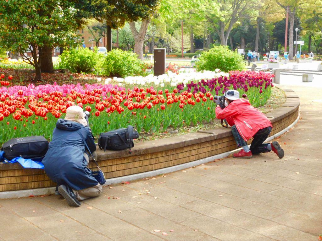 必死に写真を撮る人々