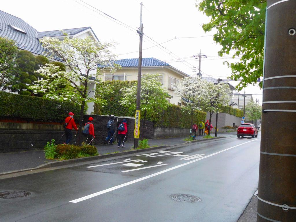 花水木通りを更に進みます