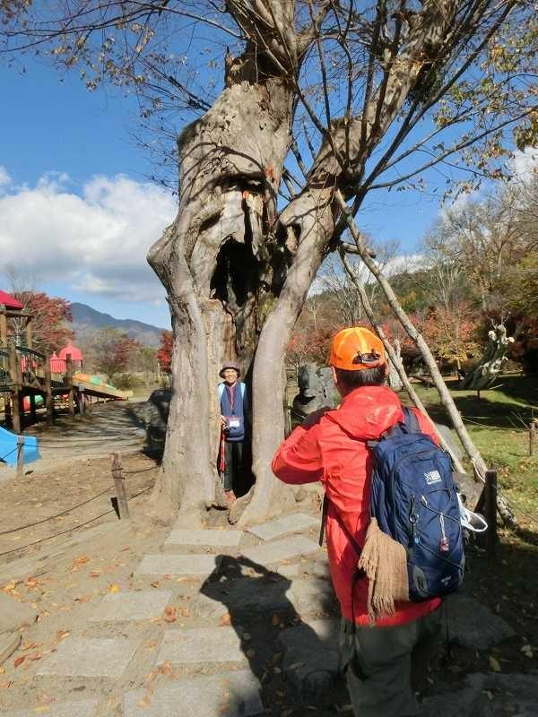 大きな木の祠に入ってパチリ 本日のAさんのエスコートは見事!!