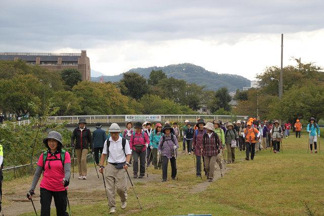 浅川遊歩道 こちら側は歩行者も少なくゆったりと歩けます