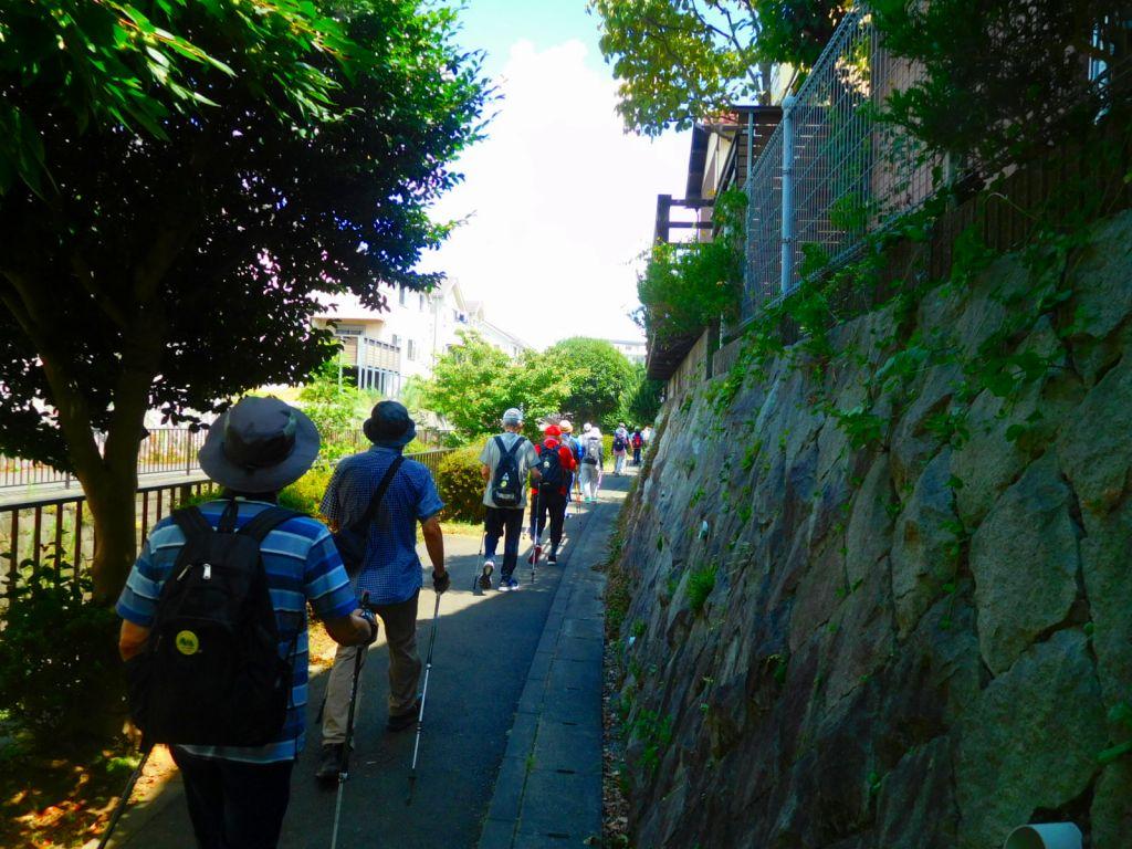 黒須田川沿いを歩いてます