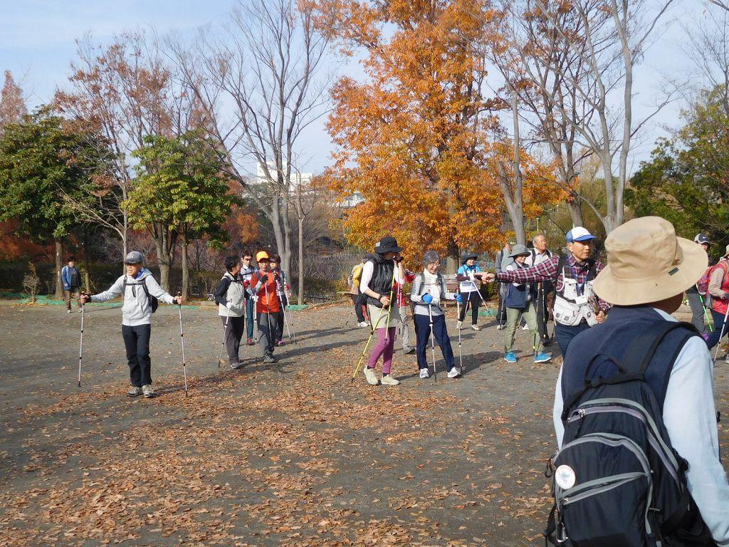泉田向公園で休憩、端の方にはメタセコイアの樹も見えています
