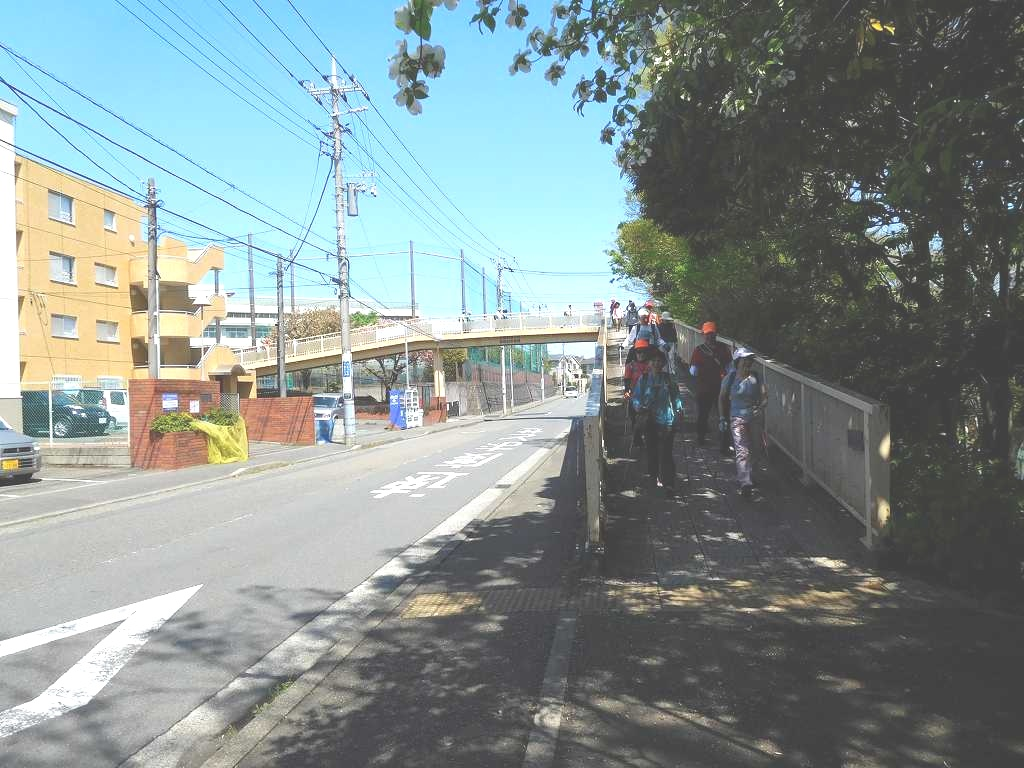 泉田向公園入口の横断歩道を歩く