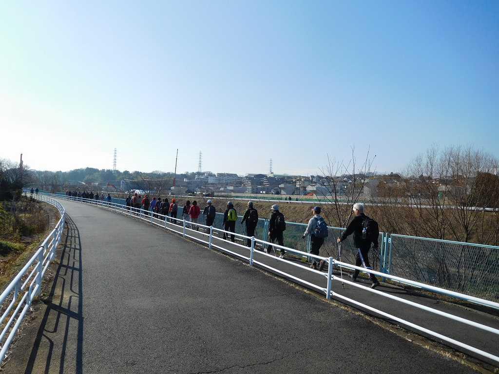 鶴見川を1列で歩行中 1列で歩く姿は美しいですね