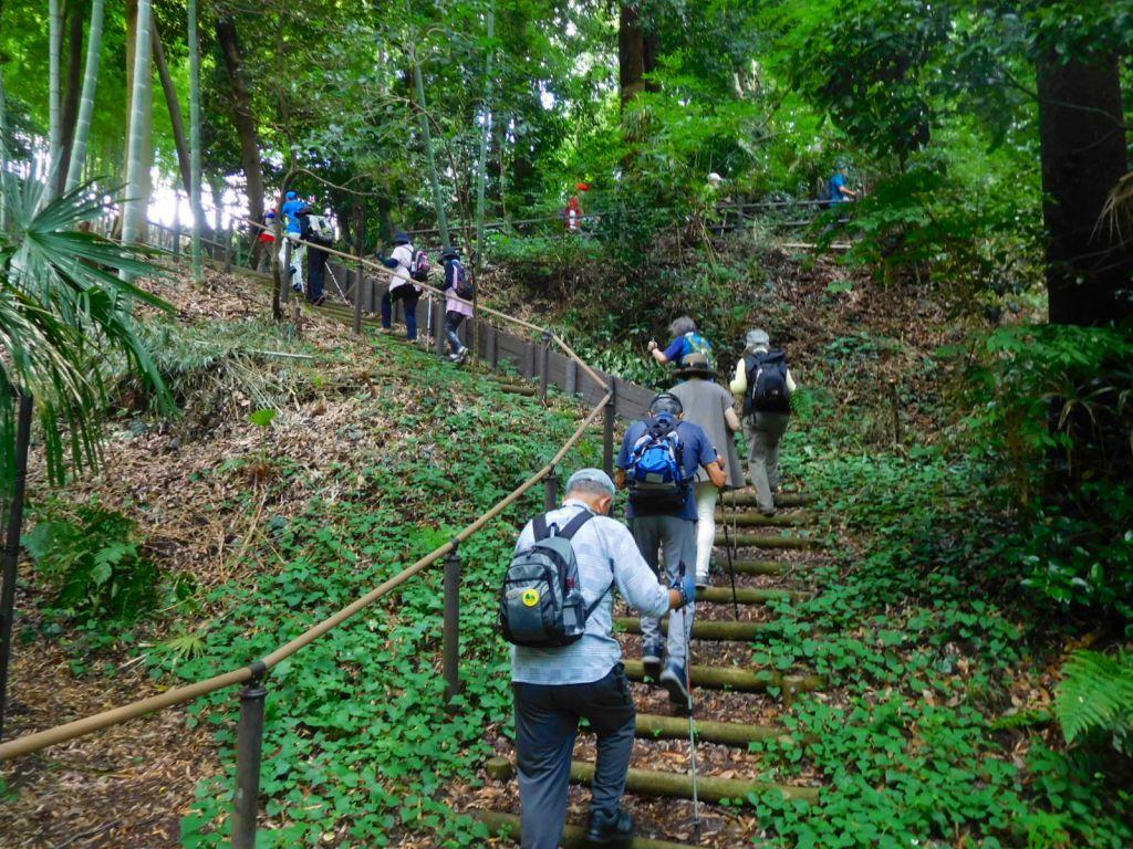 北八朔公園内の山道の階段を上る