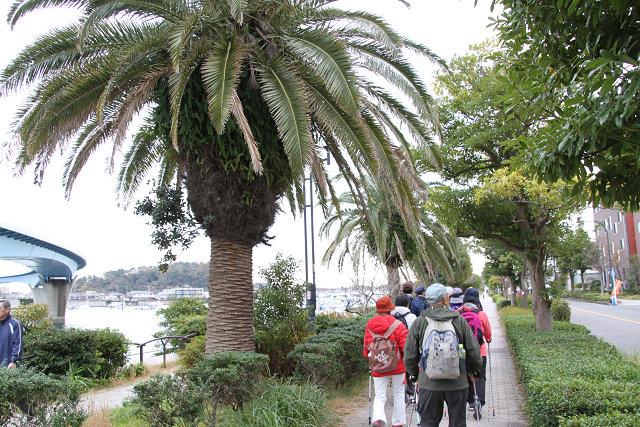 枇杷島神社を眺めつつ平潟プロムナードを歩く